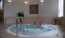 Санаторий Hotel Kralovska Villa - 14