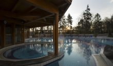 Санаторий Danubius Health Spa Resort Hévíz Superior - 19