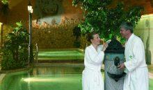 Санаторий Naturmed Hotel Carbona Superior - 11