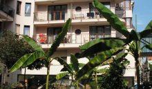 Отель Mango Hotel - 2