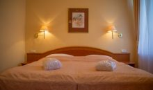 Санаторий Spa Hotel Vltava - 11