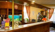 Отель Hotel Dalimil - 8